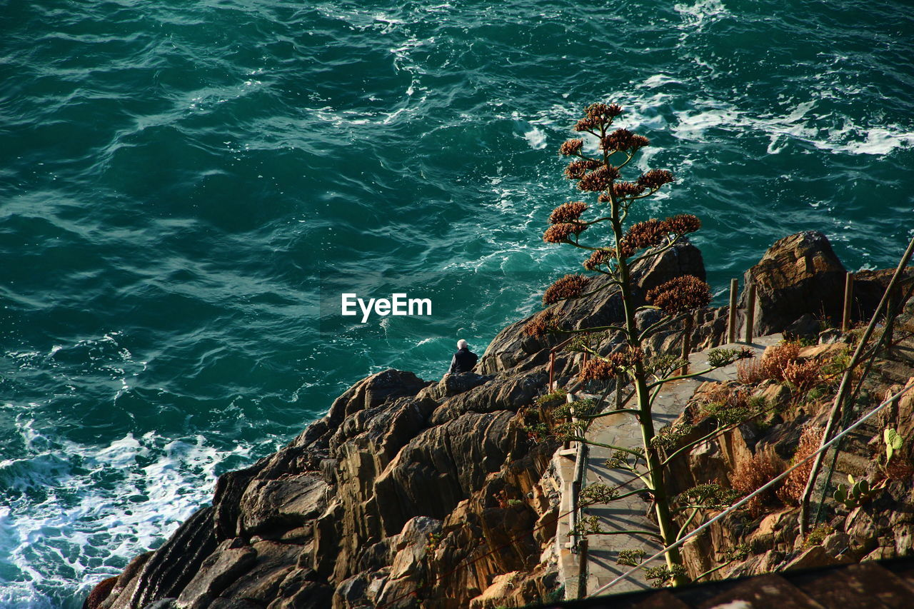 Person sitting on rocks on coast
