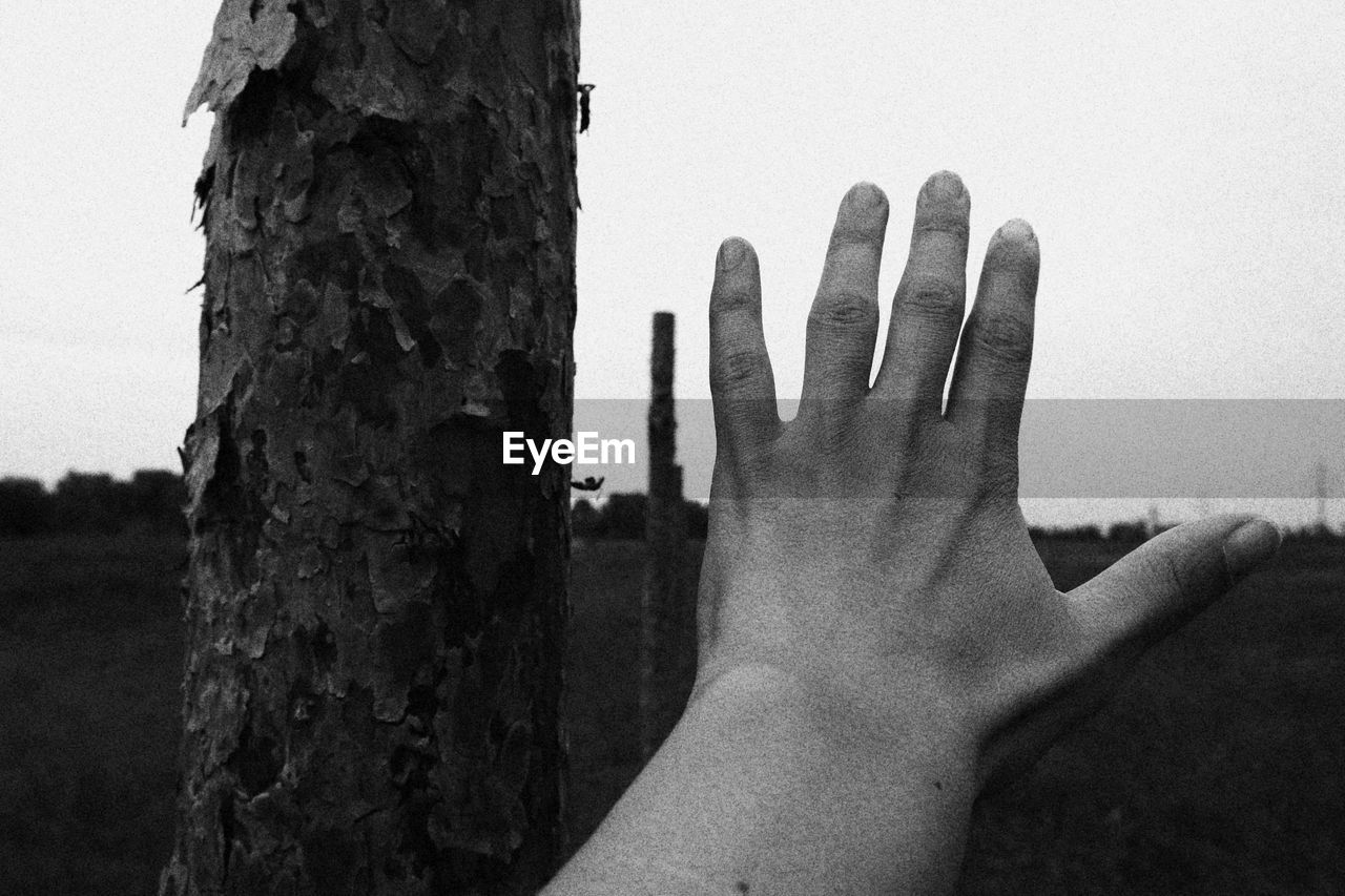 Close-up of hand by tree trunk against sky