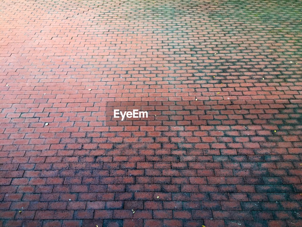 Detail shot of cobblestone street