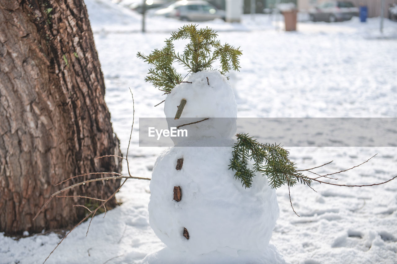 Snowman By Tree On Field