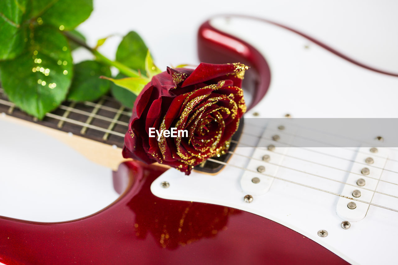Close-Up Of Flower On Guitar