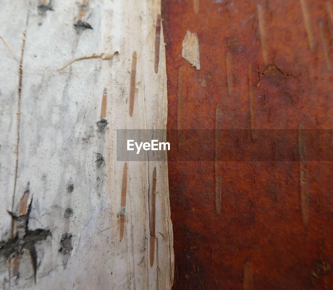 wood - material, textured, full frame, weathered, backgrounds, close-up, brown, no people, old, metal, run-down, pattern, wall - building feature, damaged, rusty, rough, deterioration, day, decline, built structure, wood, wood grain