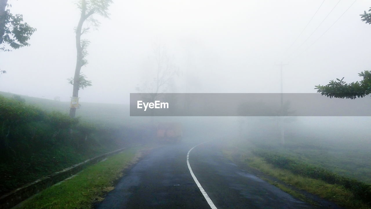 ROAD AMIDST TREES DURING FOGGY WEATHER