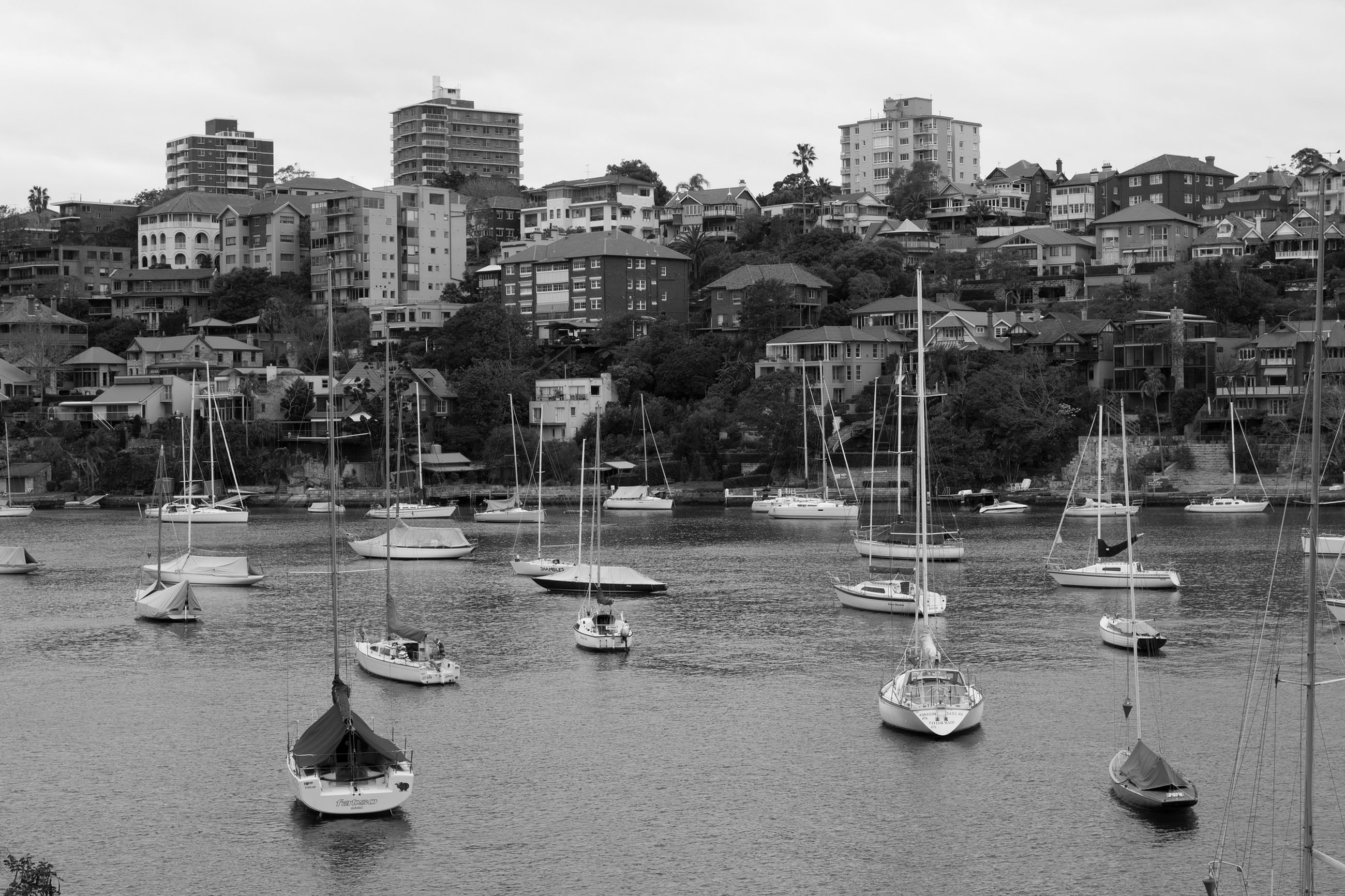 Sailboats moored on river by city against sky