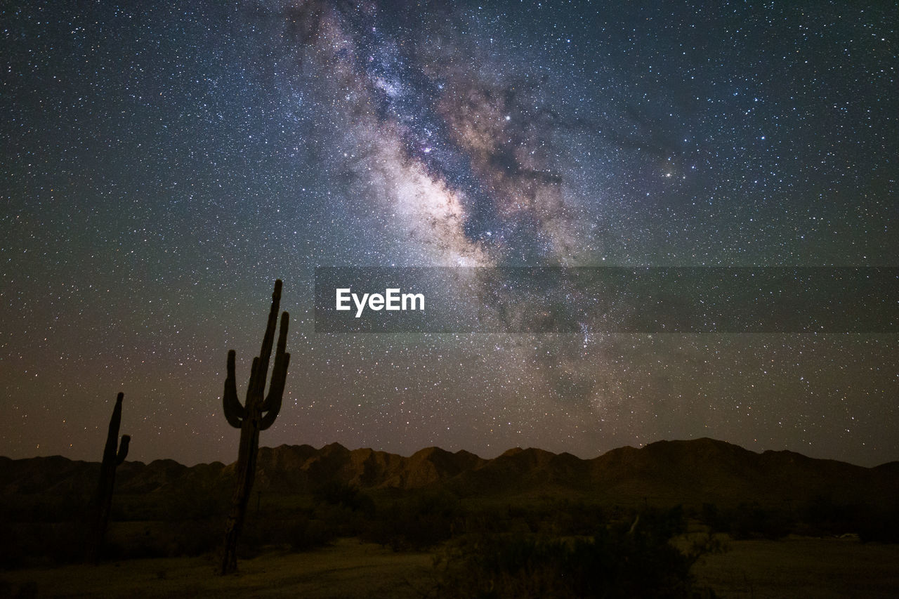 Scenic view of star field over desert at night