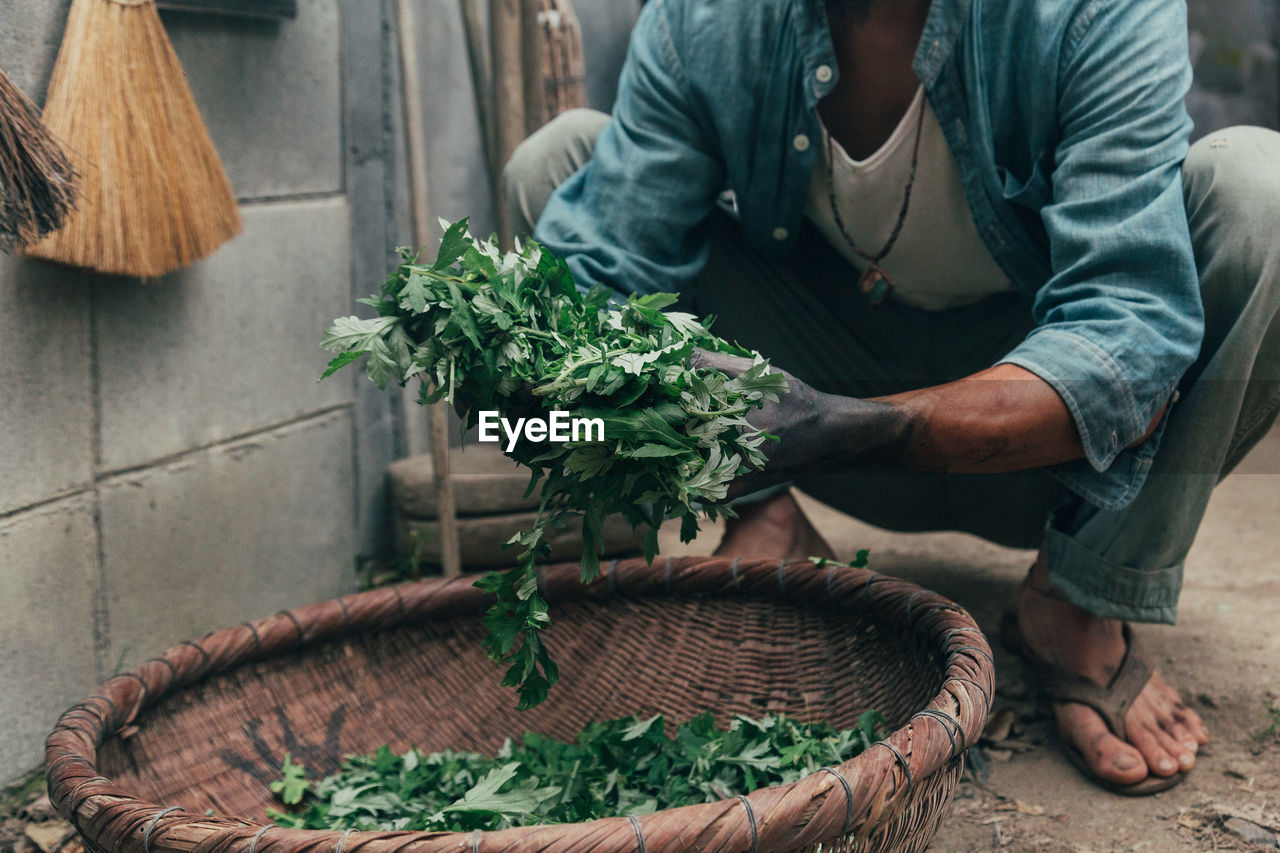 Low Section Of Man Holding Leaf Vegetables By Basket