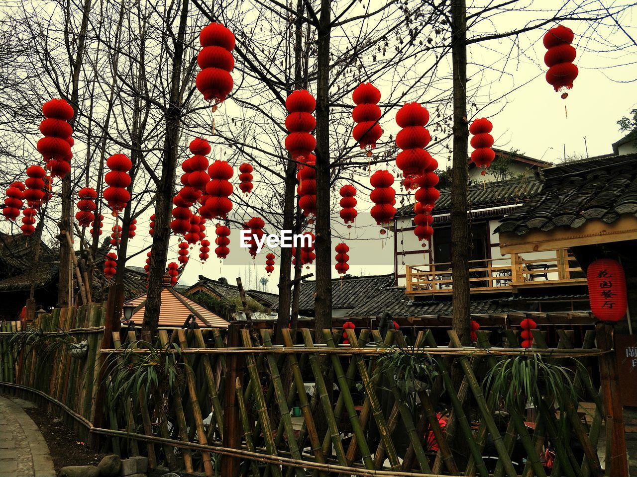 built structure, chinese lantern, building exterior, architecture, hanging, lantern, low angle view, outdoors, red, paper lantern, chinese new year, day, chinese lantern festival, no people, city, tree, sky