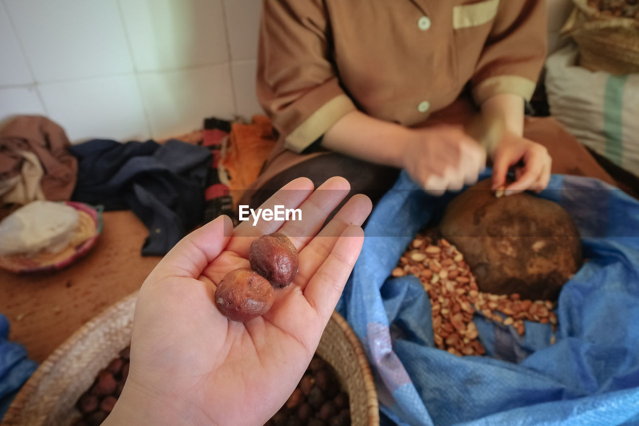 Whole argan fruit on a hand with blurry local woman cracking argan shell essaouira, morocco.