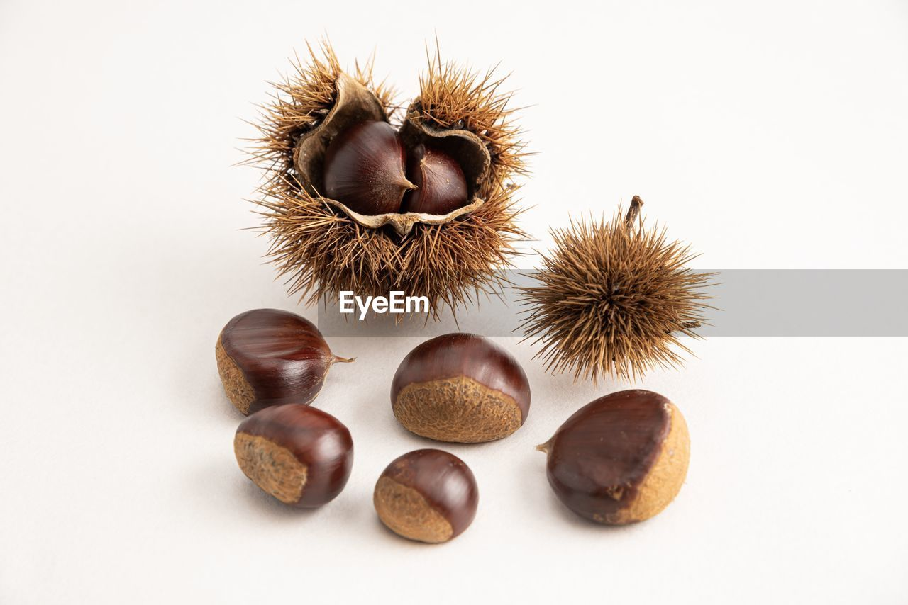 white background, food and drink, studio shot, food, still life, chestnut - food, no people, indoors, brown, nut - food, close-up, freshness, nut, chestnut, healthy eating, wellbeing, raw food, fruit, group of objects, cut out
