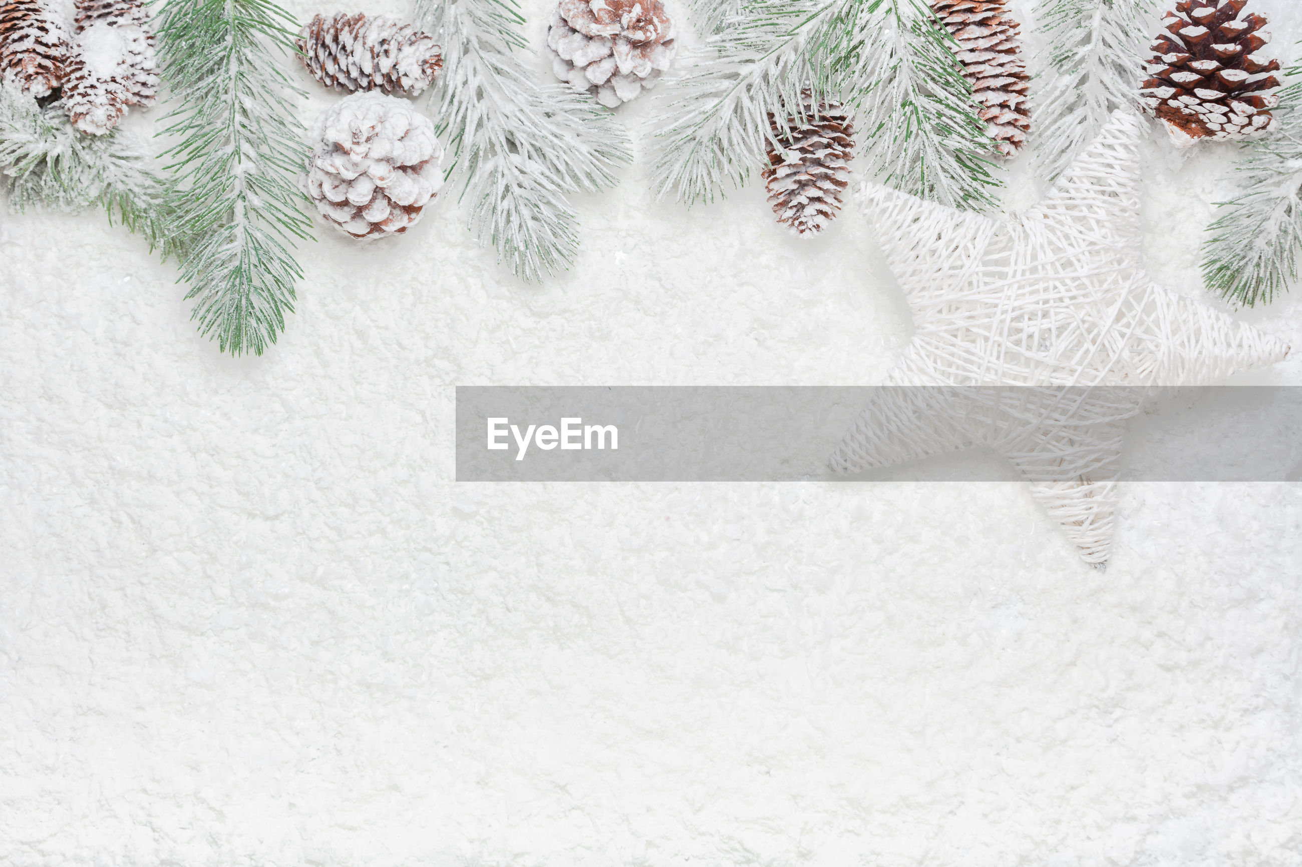 CLOSE-UP OF CHRISTMAS TREE ON SNOW COVERED LANDSCAPE