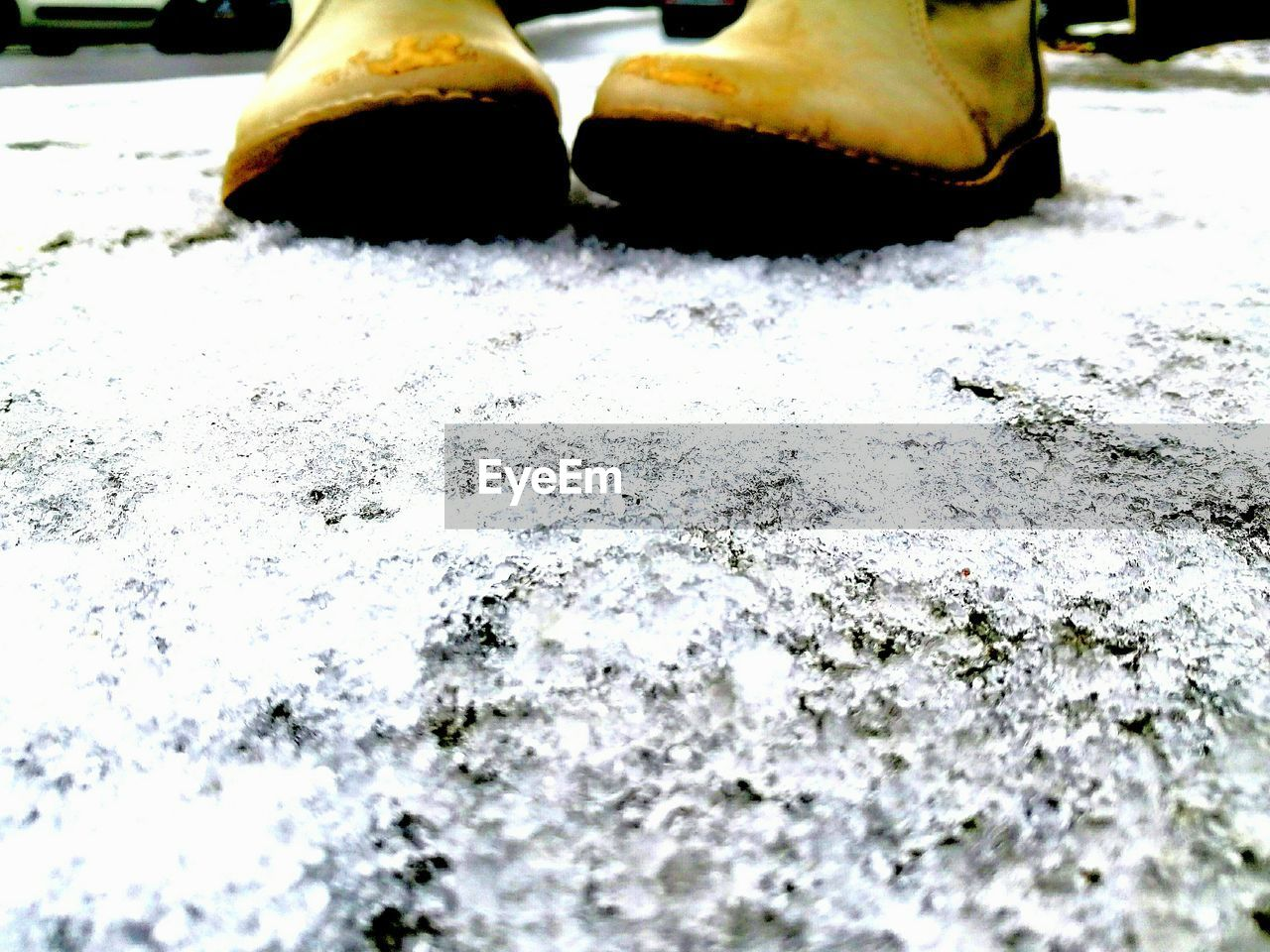 winter, snow, cold temperature, ice, outdoors, day, close-up, no people, nature