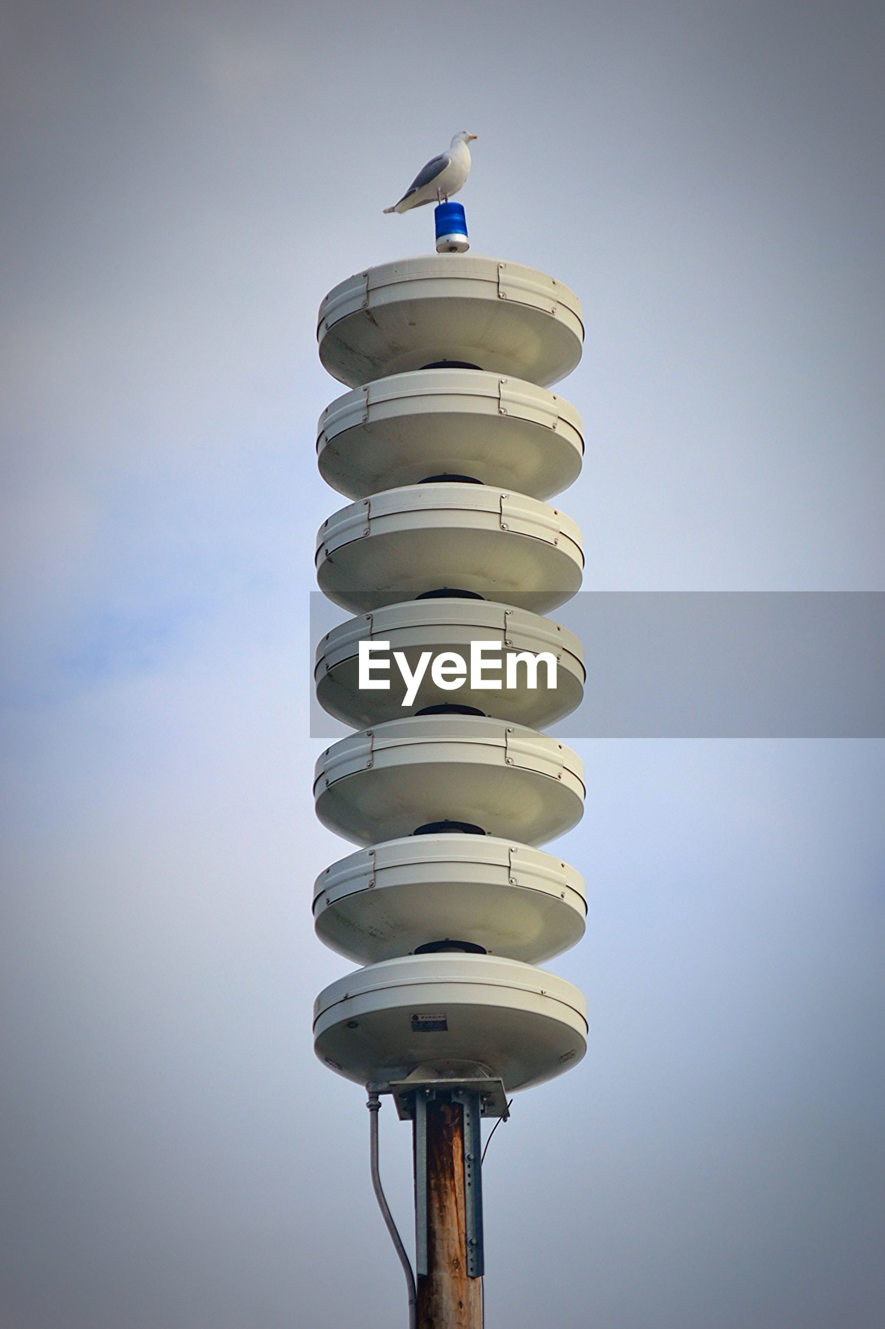 Low angle view of seagull perching on siren tower against sky