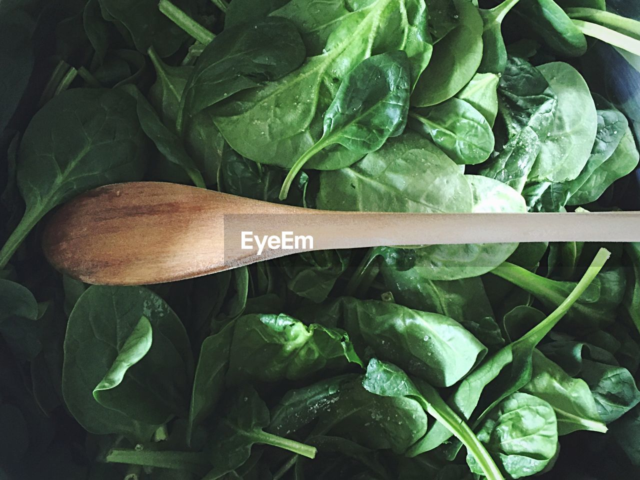 Directly Above Shot Of Wooden Spoon On Spinach
