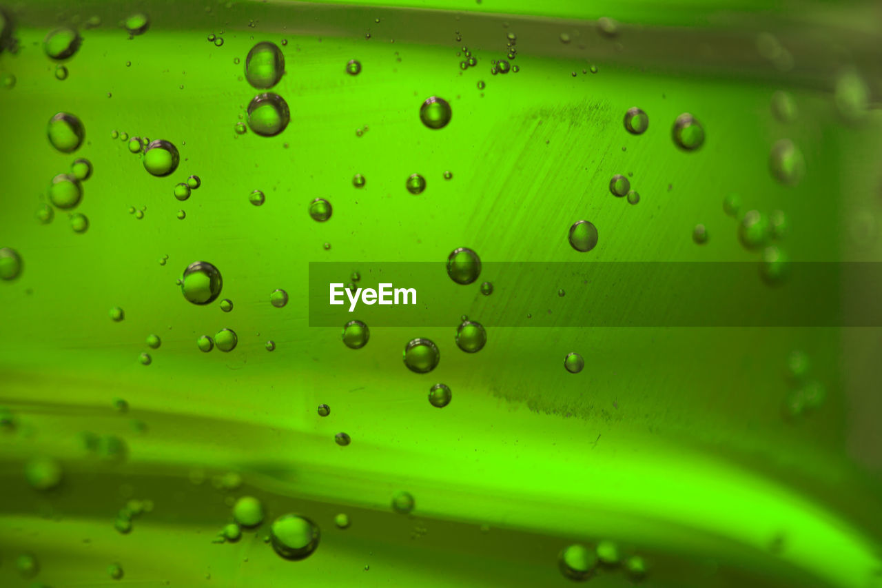 green color, drop, close-up, backgrounds, wet, water, no people, full frame, transparent, pattern, indoors, nature, glass - material, bubble, macro, design, selective focus, textured, shape, rain, raindrop, glass, purity