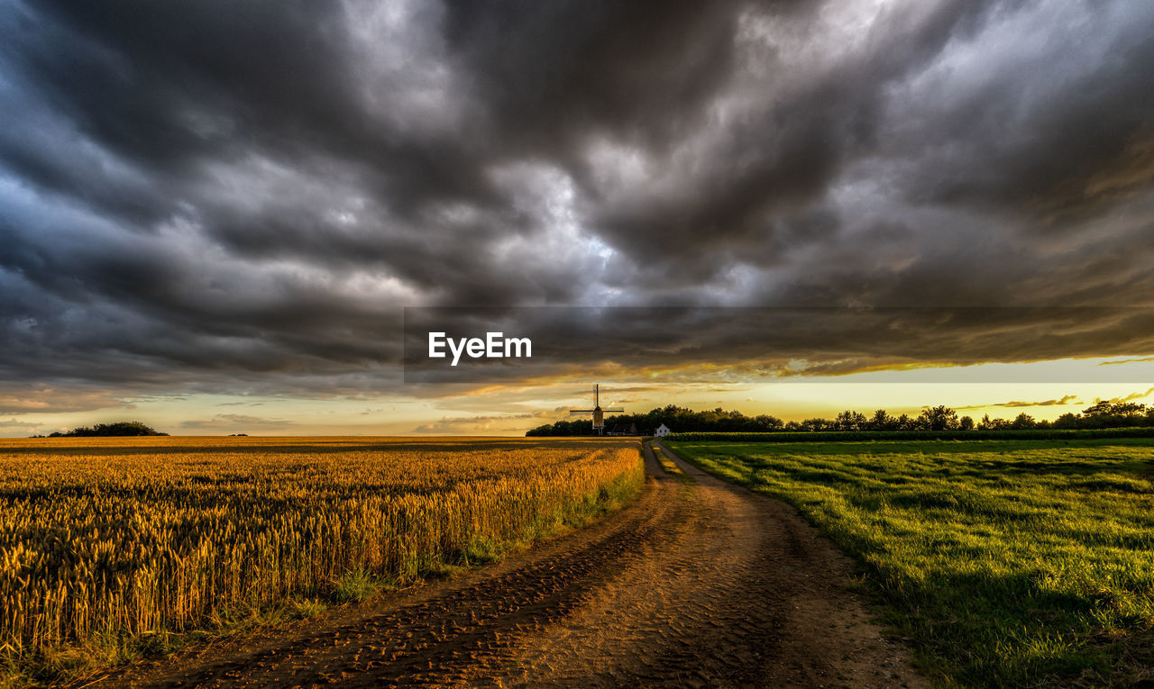Dirt road amidst agricultural field against cloudy sky