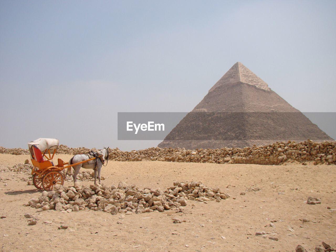 Horse cart against pyramid of chephren at desert