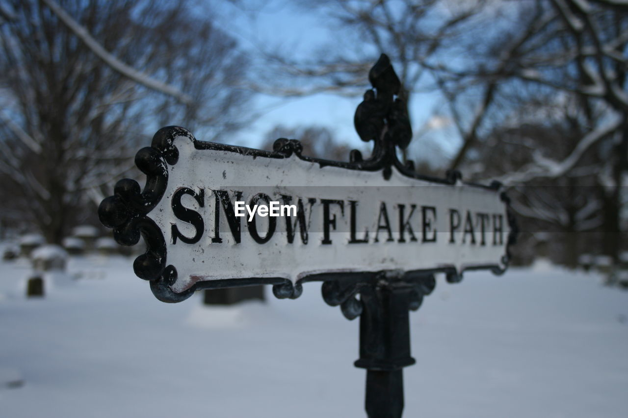 communication, text, sign, focus on foreground, tree, bare tree, nature, no people, western script, sky, guidance, day, information, metal, low angle view, cold temperature, information sign, script, direction, plant, outdoors