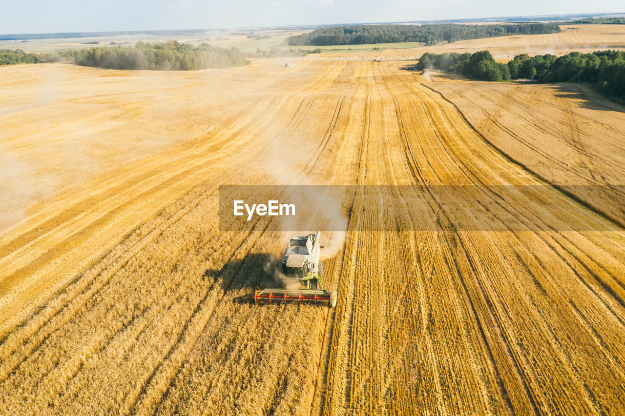 Aerial view drone of harvest field with tractor mows dry grass. autumn yellow field