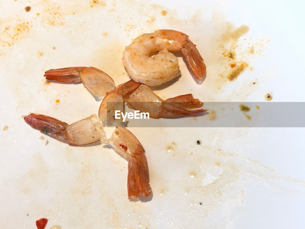 food and drink, food, close-up, directly above, indoors, still life, no people, high angle view, freshness, white background, leftovers, seafood, crab, ready-to-eat, plate, dirt, indulgence, studio shot, nature, animal, snack, temptation