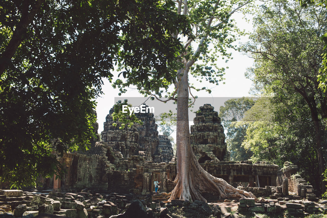 View Ancient Historical Temple Amidst Trees
