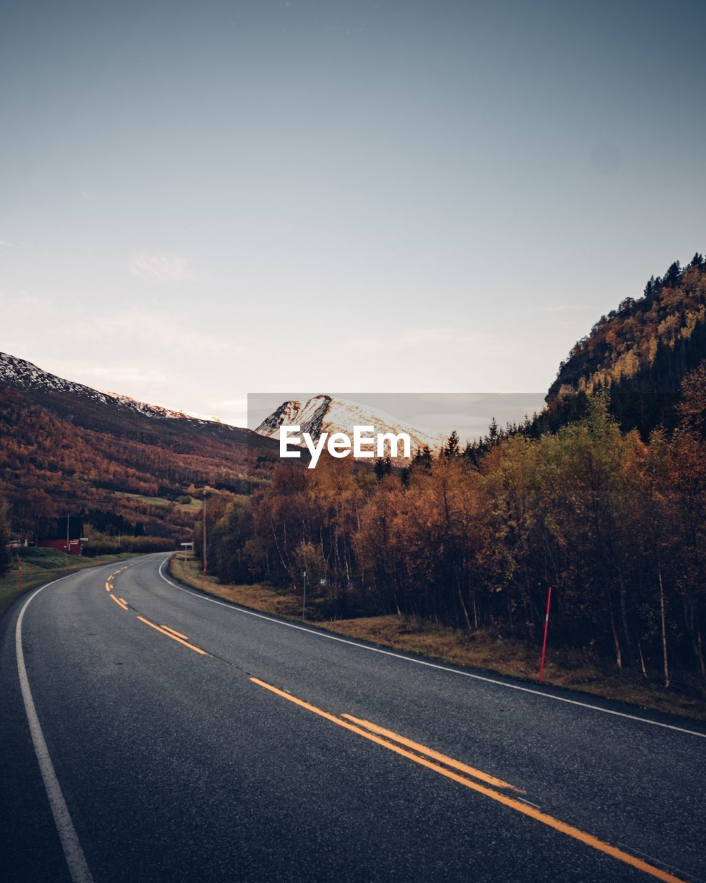 road, transportation, sky, road marking, the way forward, marking, direction, sign, symbol, no people, plant, tree, nature, day, beauty in nature, mountain, empty road, dividing line, non-urban scene, scenics - nature, diminishing perspective, outdoors
