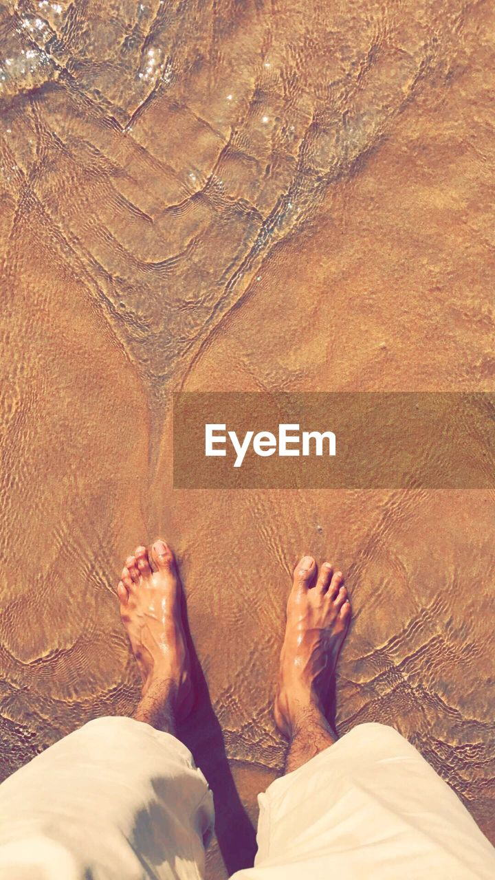 low section, human leg, barefoot, human body part, body part, personal perspective, real people, lifestyles, human foot, one person, high angle view, land, nature, day, standing, leisure activity, sand, beach, directly above, outdoors, human limb