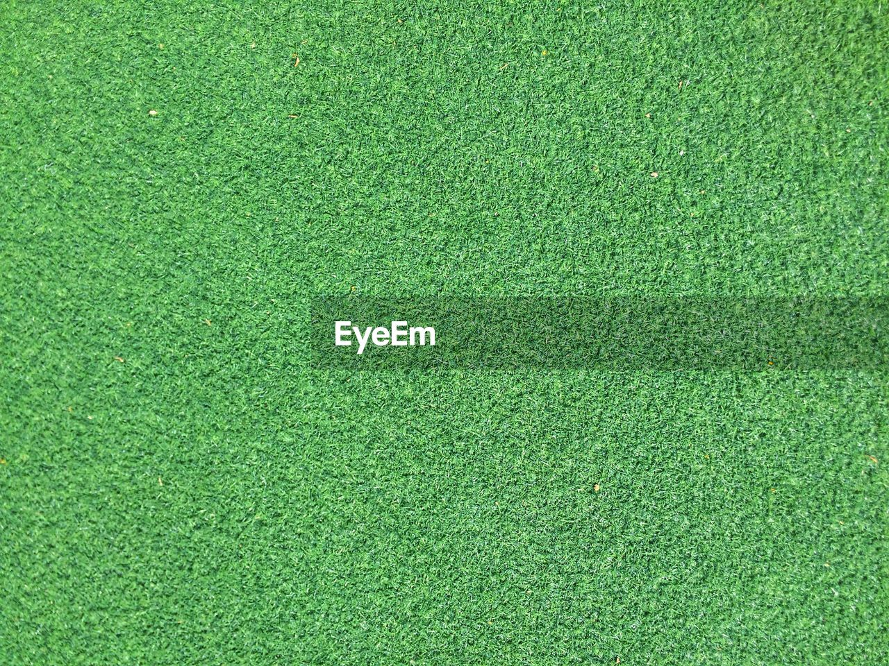 green color, backgrounds, grass, sport, textured, full frame, no people, lawn, playing field, copy space, blank, close-up, textured effect, plant, empty, pattern, directly above, golf, environment, carpet - decor, clean, green background, turf
