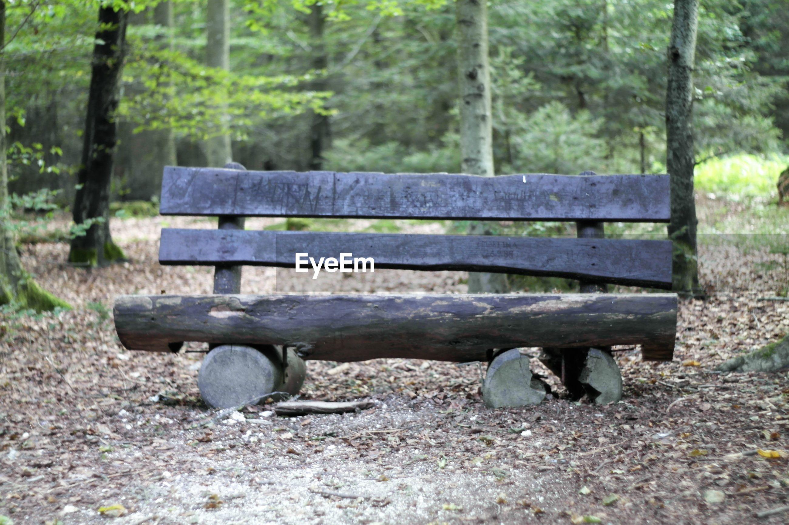 EMPTY BENCH ON BENCH