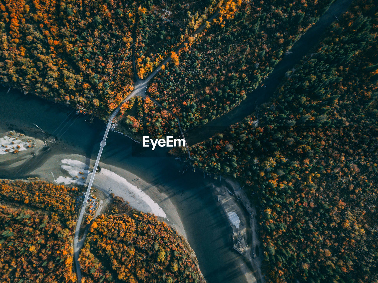 HIGH ANGLE VIEW OF AUTUMN TREE BY WATER