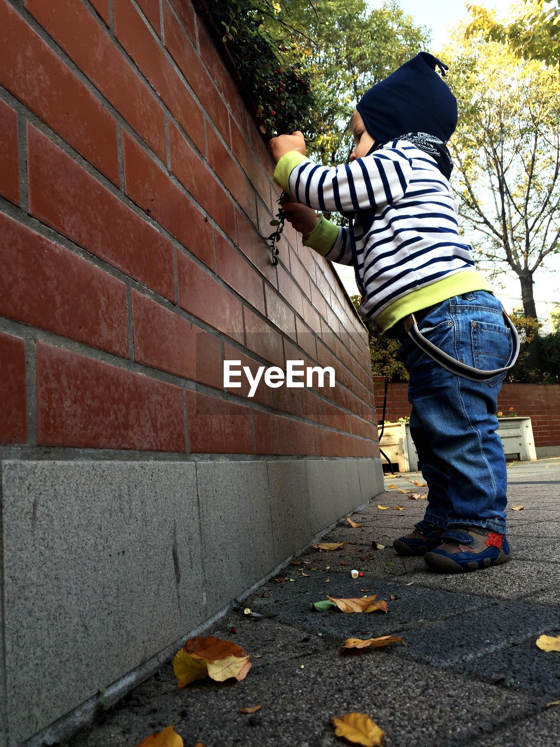 Side view of toddler standing by brick wall in back yard