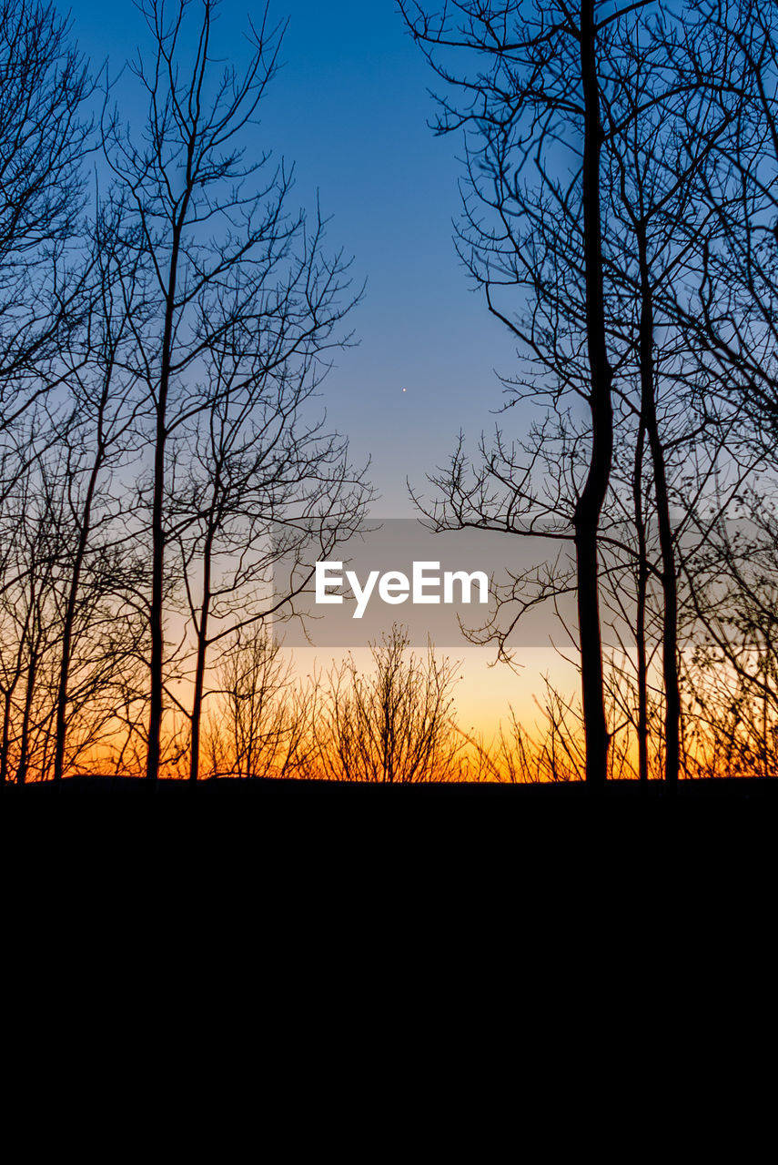 silhouette, sky, tree, sunset, beauty in nature, scenics - nature, bare tree, plant, tranquility, tranquil scene, branch, no people, nature, environment, outdoors, non-urban scene, landscape, land, cloud - sky, orange color, dark
