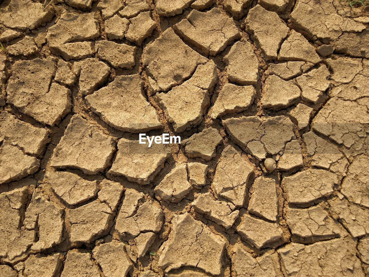 drought, backgrounds, climate, full frame, arid climate, dry, environment, scenics - nature, cracked, barren, textured, nature, pattern, land, no people, natural pattern, landscape, day, dirt, mud, outdoors, power in nature, textured effect