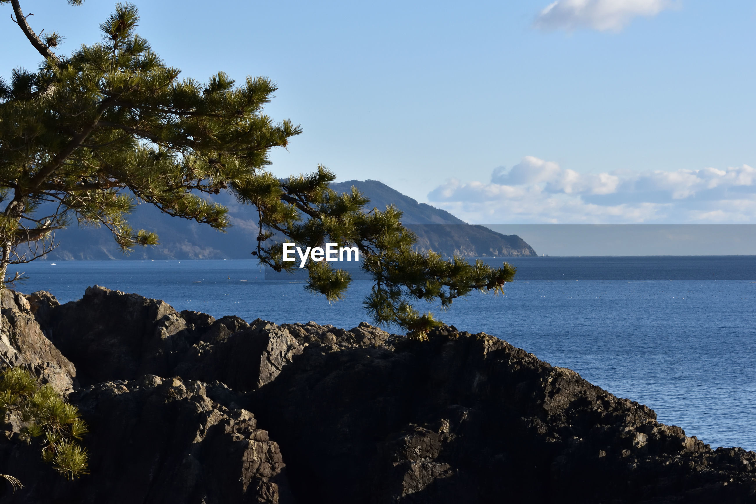 SCENIC VIEW OF SEA BY TREE MOUNTAIN AGAINST SKY