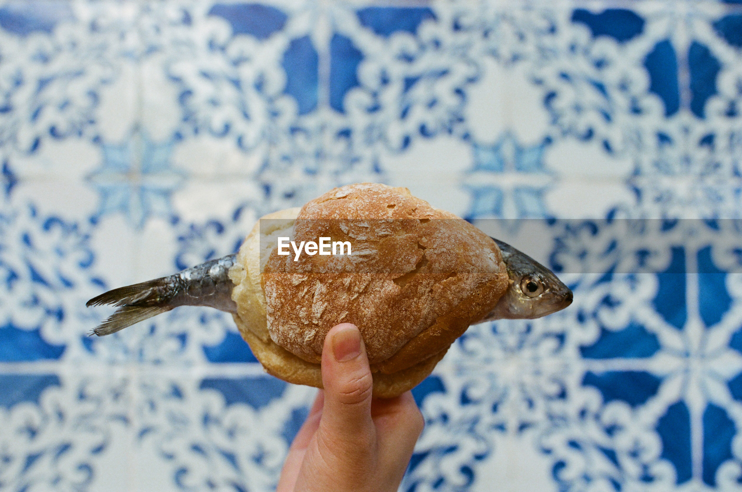 Cropped hand holding bread with fish against wall