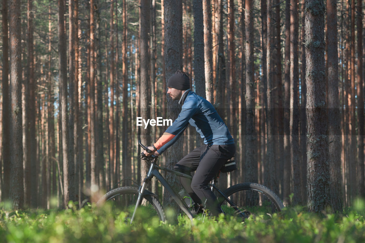 A young man rides leisurely on a bicycle in a pine forest. side view