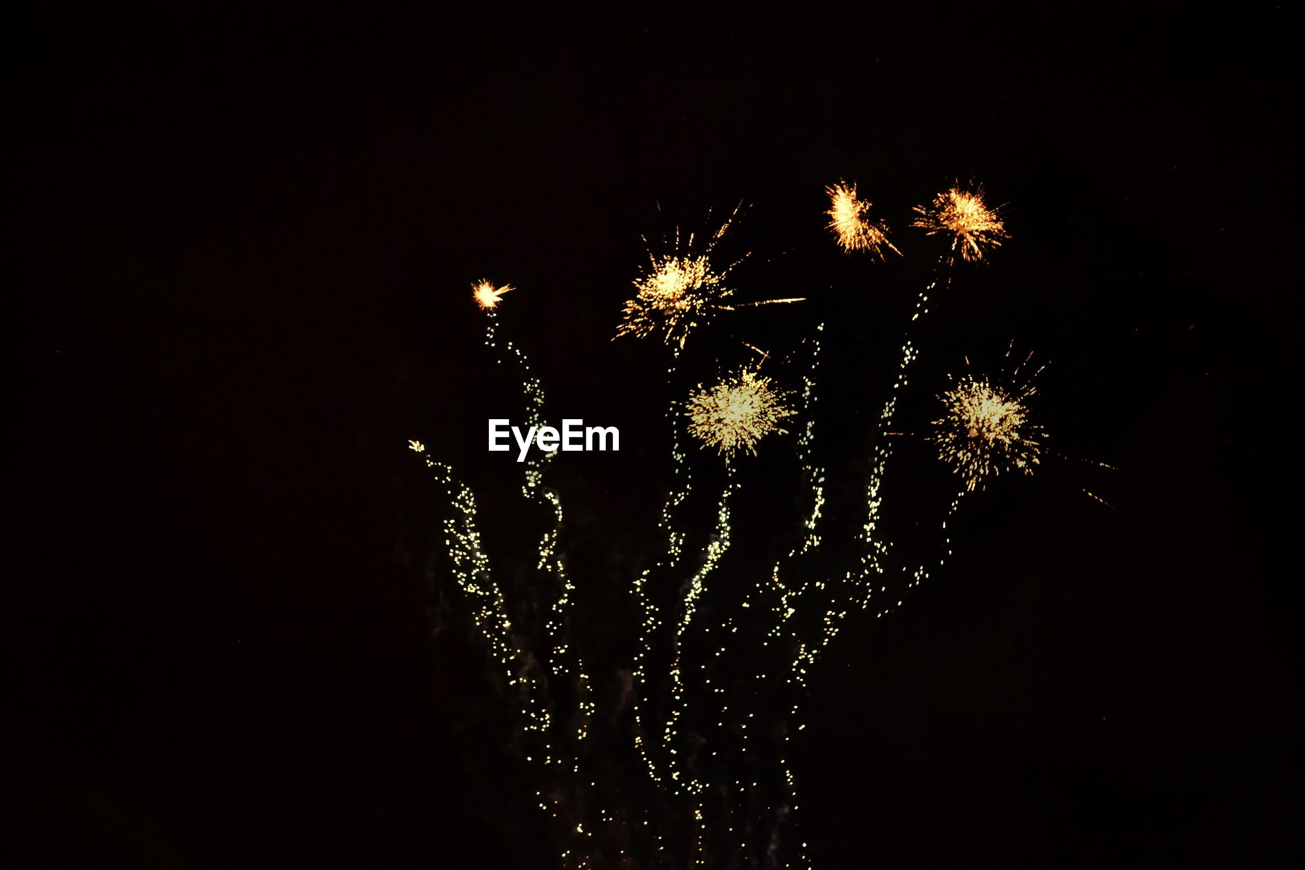 Firework display against clear sky at night