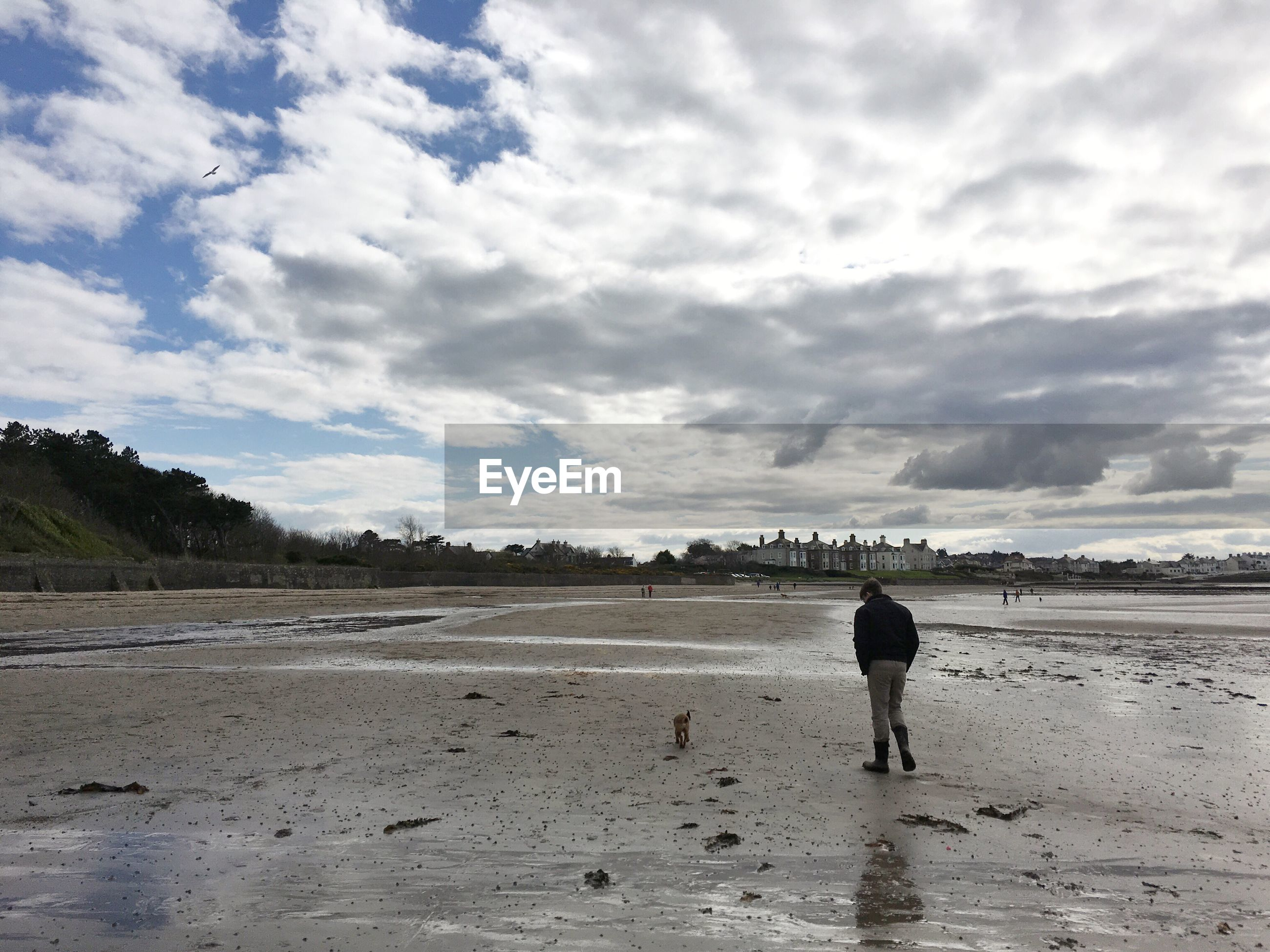 Rear view of person standing on beach