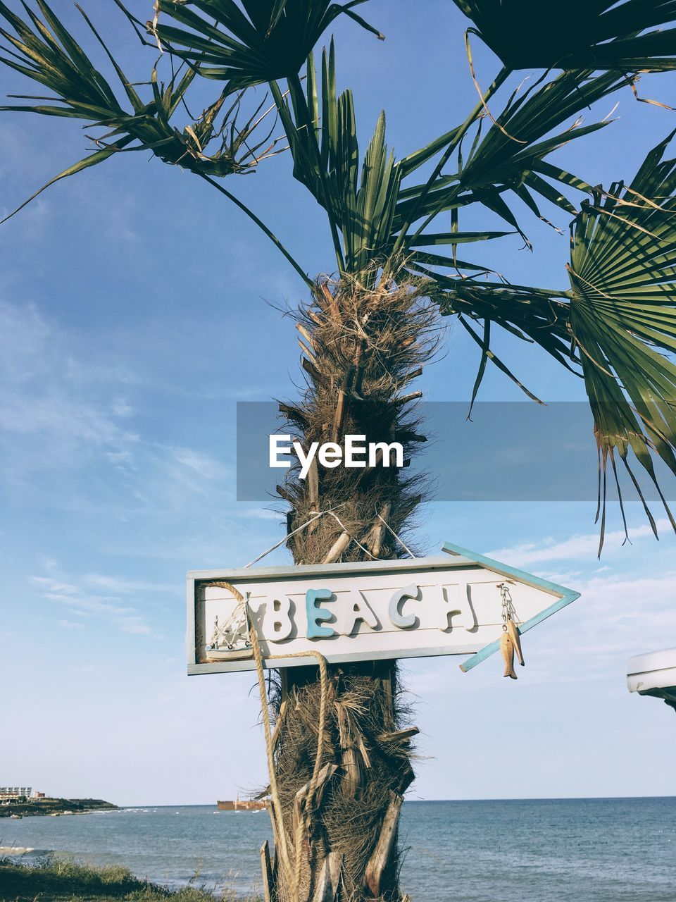 sky, communication, sign, tree, water, text, nature, sea, plant, western script, information, palm tree, tropical climate, day, guidance, no people, information sign, horizon over water, beach, outdoors, coconut palm tree, palm leaf