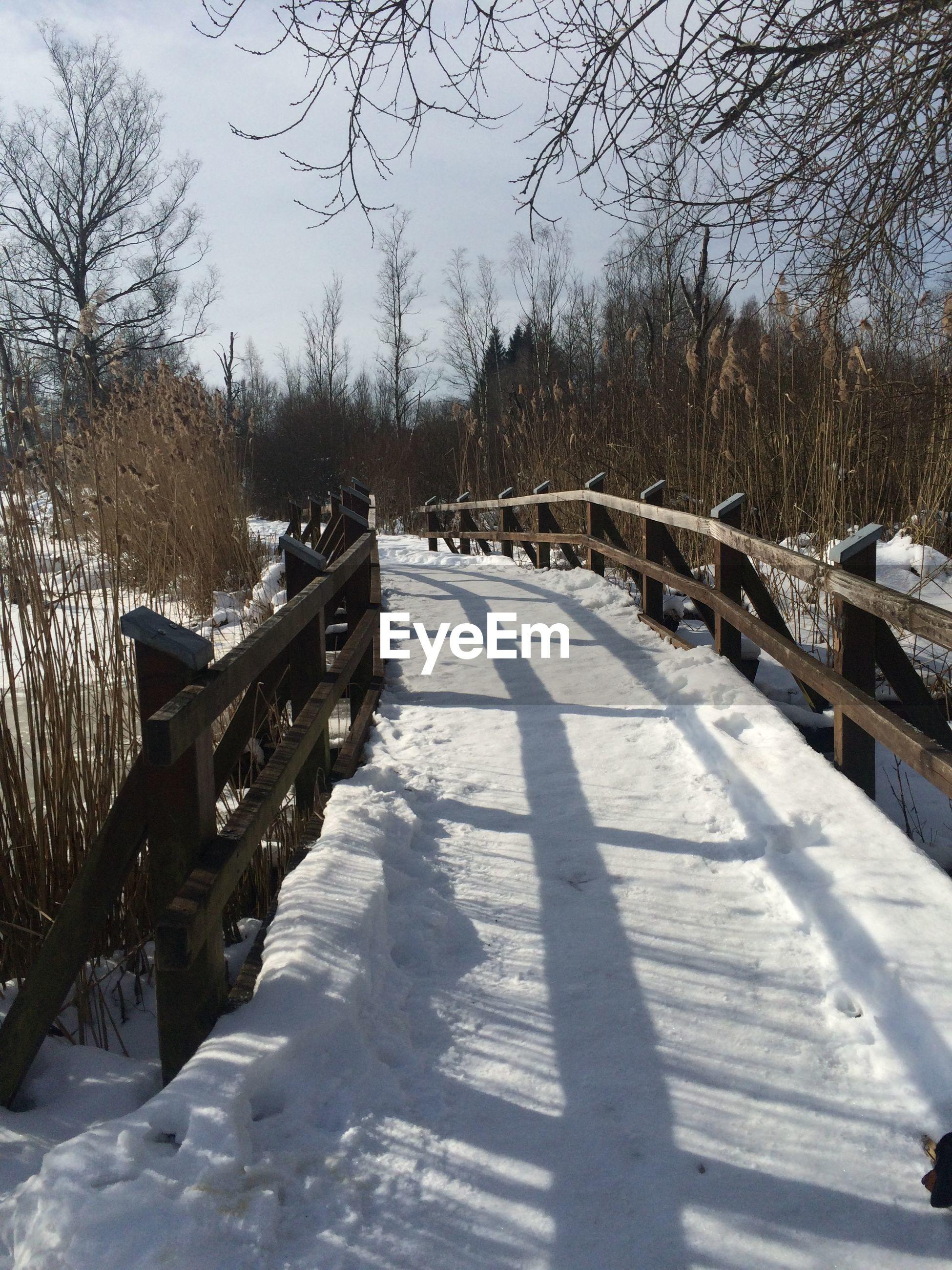Snow covered footbridge along bare trees