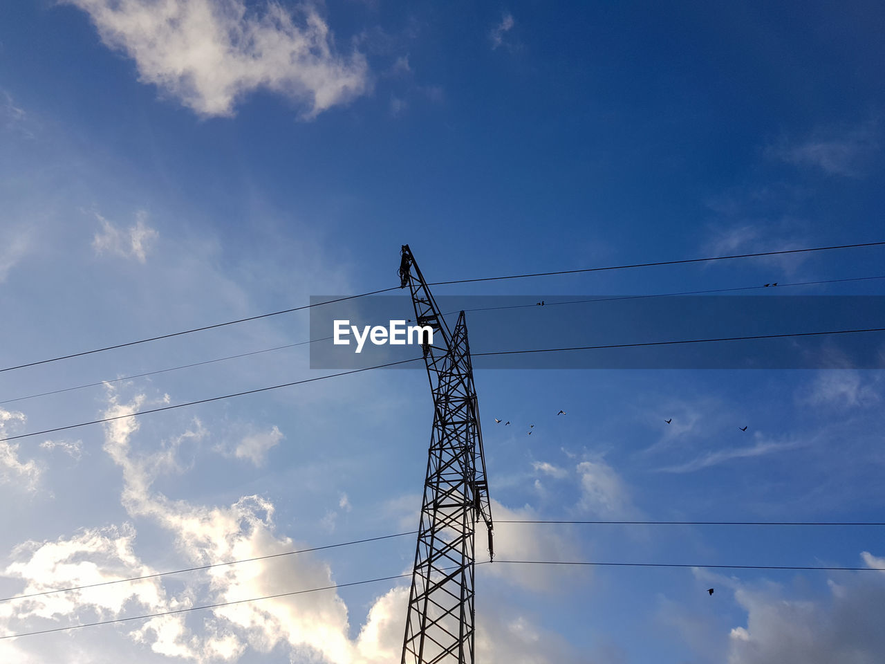 sky, cloud - sky, low angle view, electricity, cable, technology, connection, power line, electricity pylon, power supply, nature, day, blue, fuel and power generation, no people, outdoors, metal, tall - high, built structure, silhouette, complexity, electrical equipment, telephone line, flock of birds