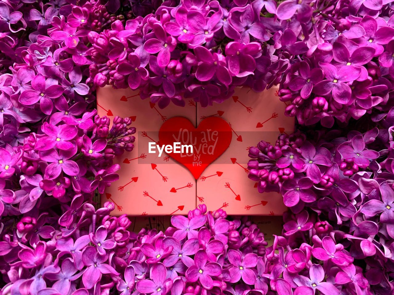 flower, love, communication, flowering plant, heart shape, positive emotion, plant, close-up, emotion, text, pink color, no people, freshness, beauty in nature, western script, petal, fragility, vulnerability, paper, message, outdoors, flower head, purple, valentine's day - holiday