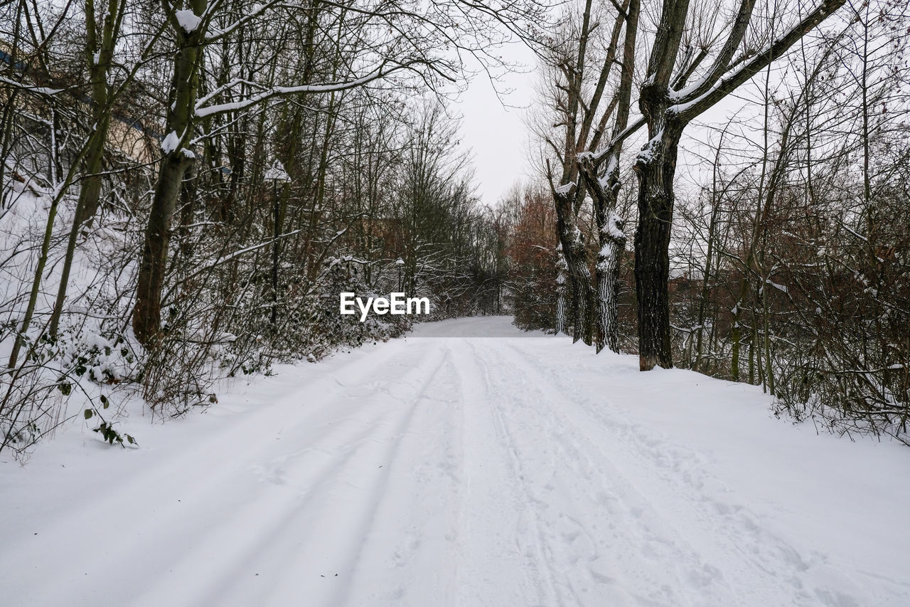 SNOW COVERED ROAD AMIDST TREES DURING WINTER SEASON