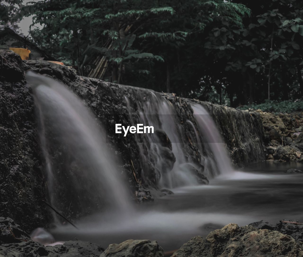 long exposure, waterfall, motion, water, flowing water, blurred motion, scenics - nature, tree, beauty in nature, flowing, forest, nature, rock, plant, no people, environment, power, power in nature, land, outdoors, falling water, rainforest, running water