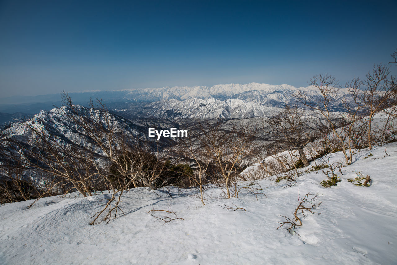 snow, winter, cold temperature, beauty in nature, scenics - nature, mountain, sky, tranquil scene, tranquility, environment, landscape, white color, plant, nature, non-urban scene, covering, tree, mountain range, day, no people, snowcapped mountain, powder snow, arid climate