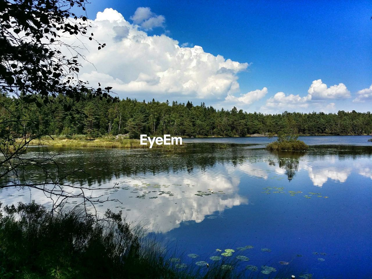 Scenic view of landscape with lake