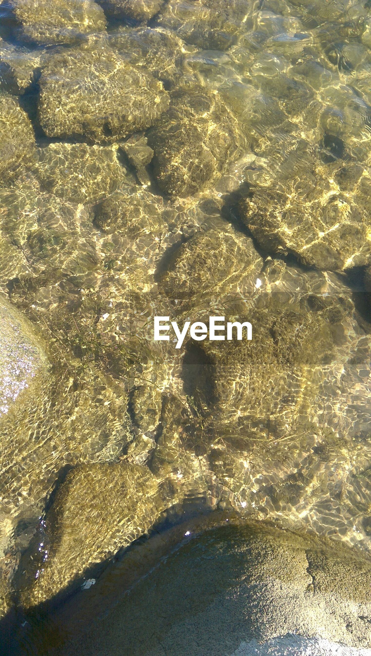 High angle view of rocks in water at lake
