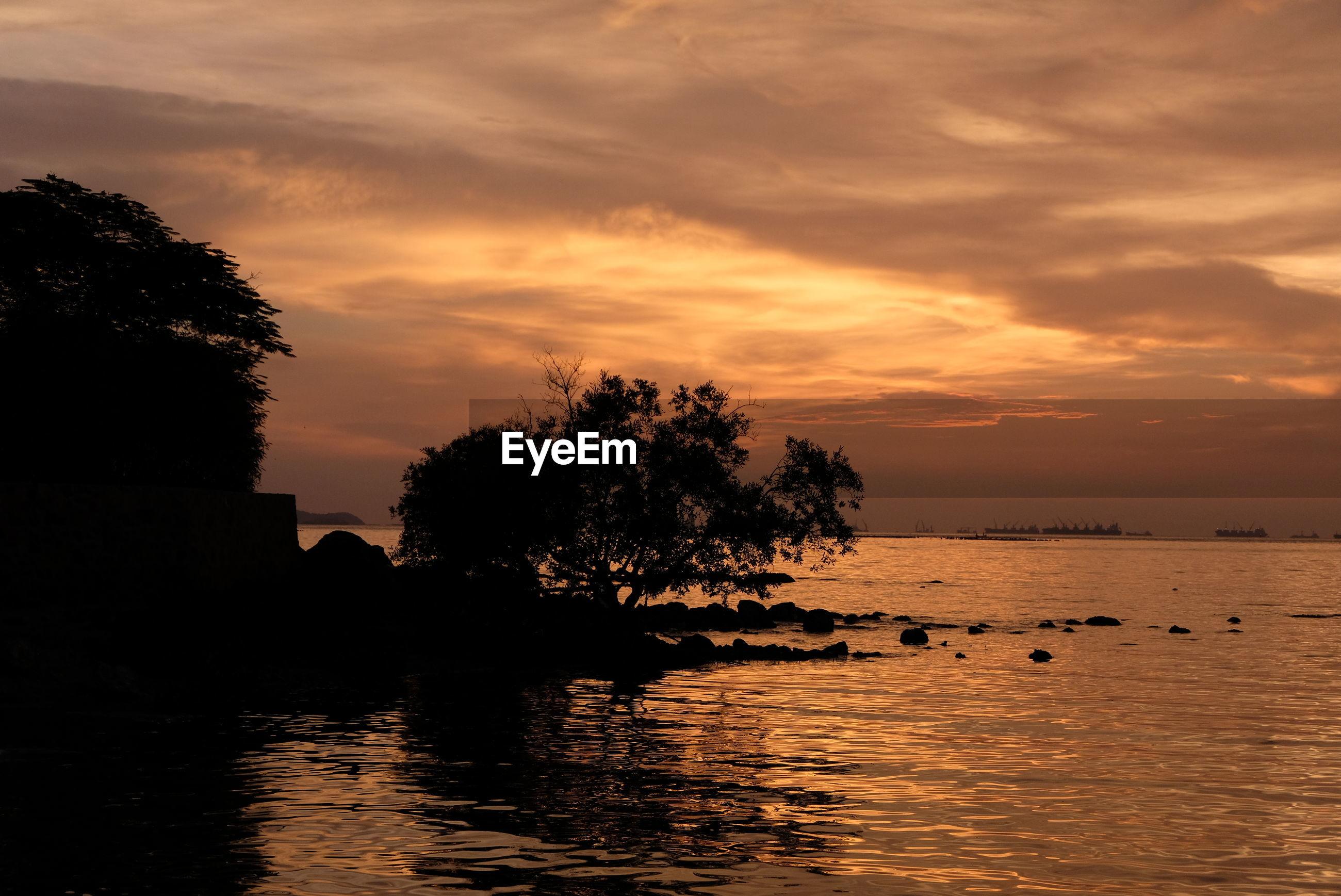 Silhouette tree by sea against orange sky