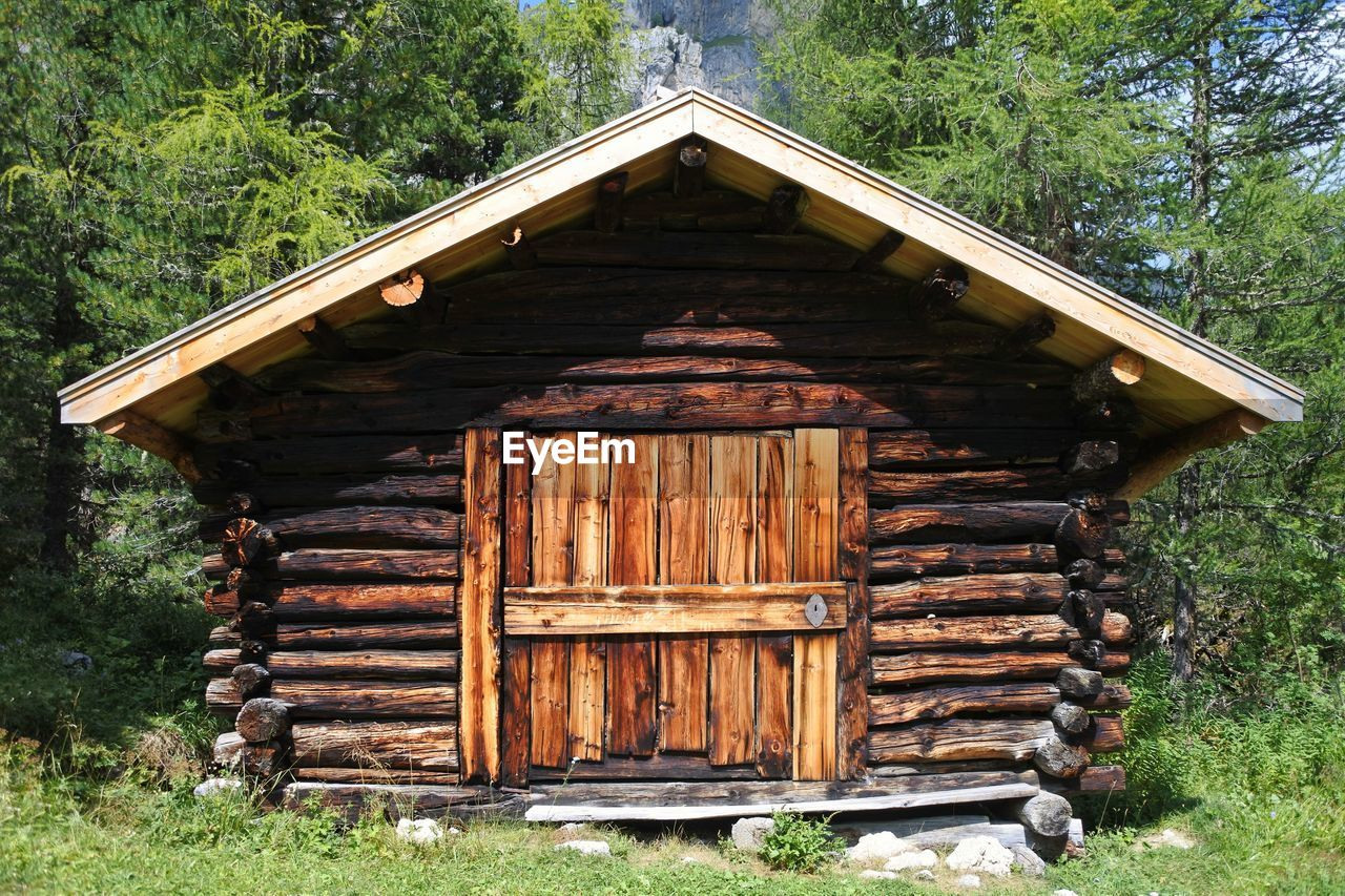 OLD WOODEN LOG CABIN ON FIELD IN FOREST