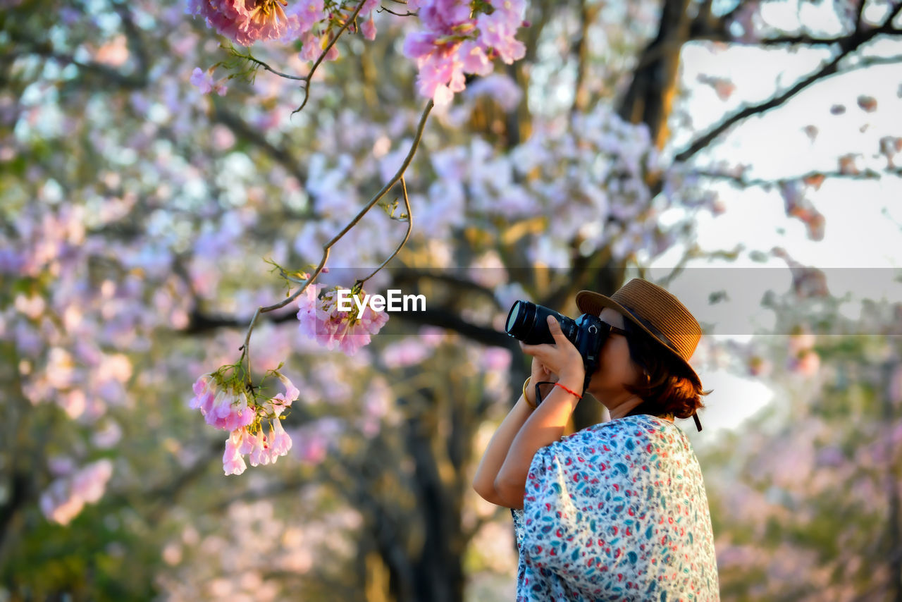 A woman photographer shooting cherry blossom in flower garden on holiday