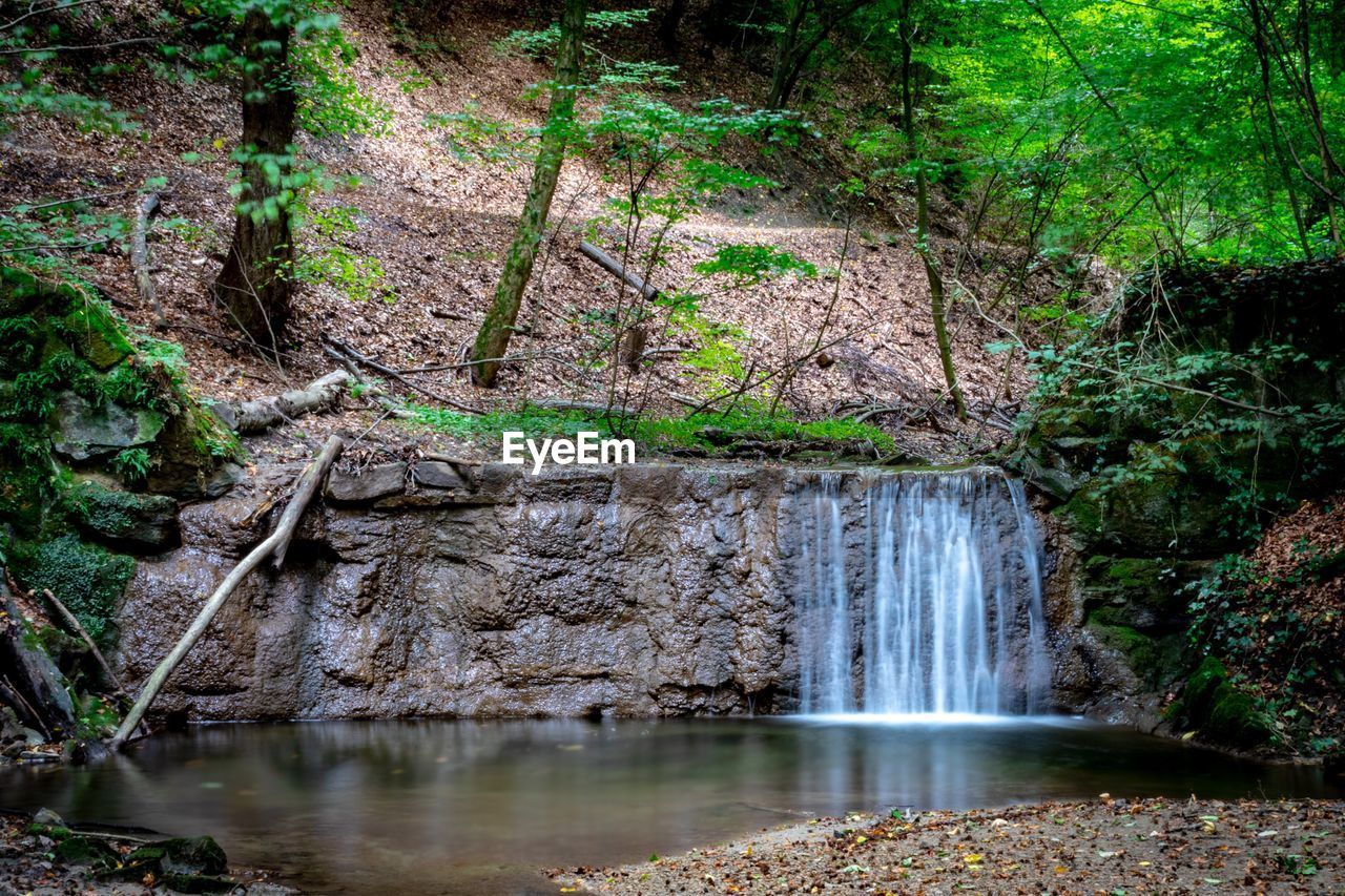 water, forest, motion, plant, flowing water, long exposure, tree, nature, waterfall, no people, scenics - nature, day, land, blurred motion, beauty in nature, river, flowing, outdoors, waterfront, stream - flowing water, power in nature, rainforest, falling water